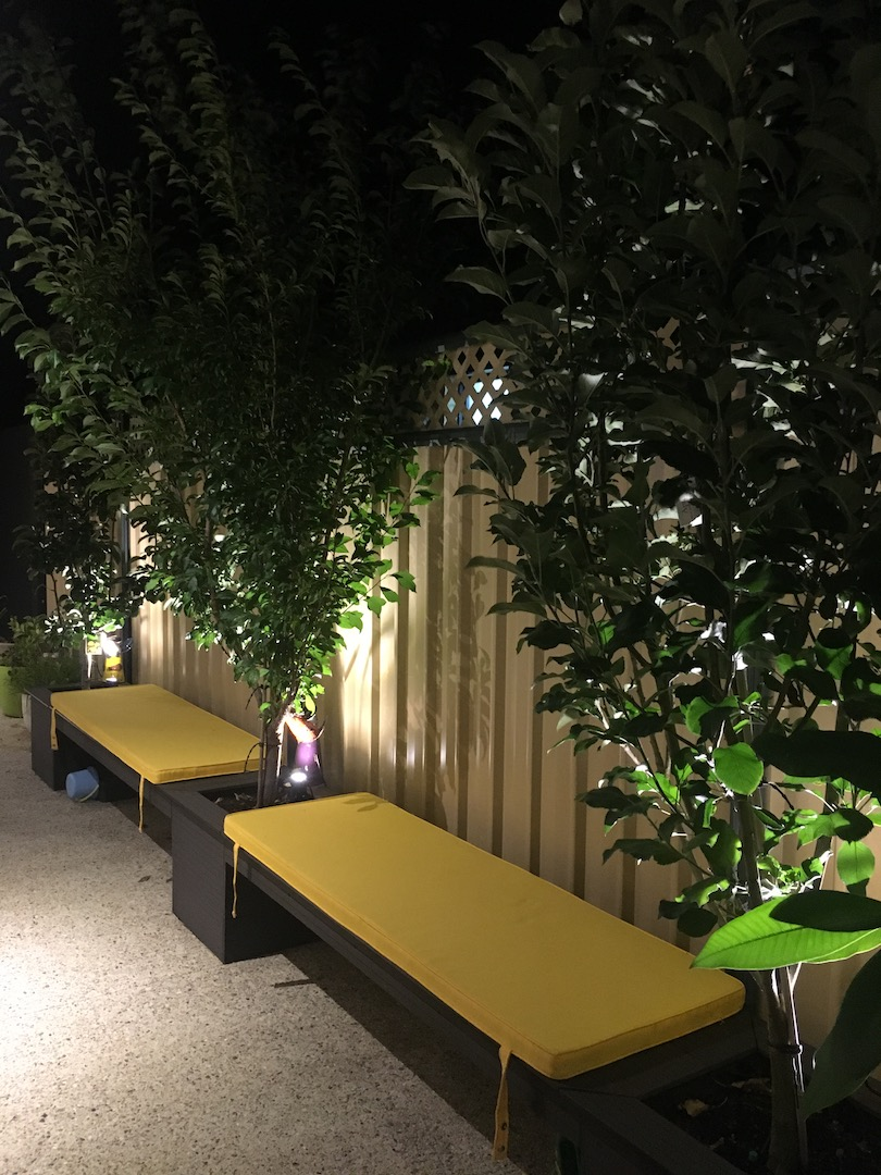 Planter box spot lights shinning through trees